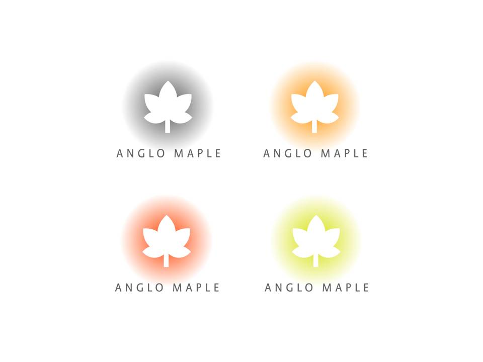 coloured logo alternates #3